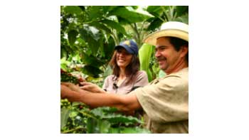 $ 155 billion will be delivered by the national government to support the coffee sector.