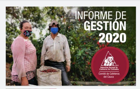INFORME DE GESTIÓN 2020